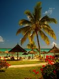 Het strand, Mauritius Stock Afbeelding