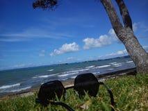 Het strand op de Vreedzame kust van Nieuw Zeeland, Auckland Stock Afbeeldingen