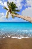 Het strand tropische aqua van het Canarische Eilanden bruine zand Stock Foto