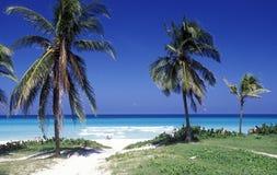 HET STRAND VAN AMERIKA CUBA VARADERO Royalty-vrije Stock Fotografie
