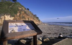 Het Strand van Arroyoburro, Santa Barbara, Californië stock foto