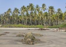 Het strand Goa van Ashvem Royalty-vrije Stock Foto