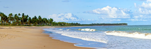 Het strand van Bahia Stock Foto's