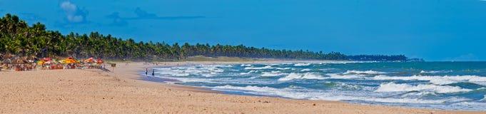 Het strand van Bahia Stock Afbeelding