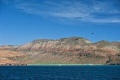 Het strand van Bajacalifornië Stock Foto's