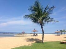 Het Strand van Bali stock foto's