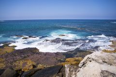 Het Strand van Bondi, Australië Royalty-vrije Stock Afbeelding
