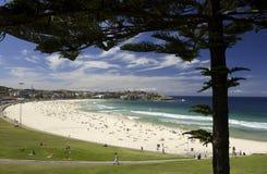 Het Strand van Bondi - Sydney - Australië Stock Foto