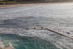 Het strand van Bronte in Sydney Stock Foto