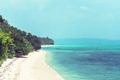 Het strand van Bush van het Cozumeleiland in Riviera Maya van Mayan stock afbeeldingen
