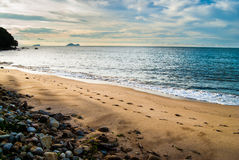 Het Strand van Damai Royalty-vrije Stock Foto's