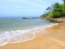 Het Strand van de drievuldigheid - Queensland, Australië Stock Afbeelding