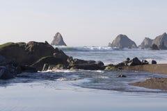 Het Strand van de geitrots - de noordwestelijke Sonoma-Provincie, Californië, is de mond van de Russische Rivier royalty-vrije stock foto's