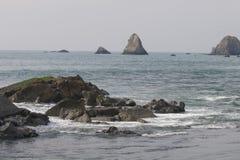 Het Strand van de geitrots - de noordwestelijke Sonoma-Provincie, Californië, is de mond van de Russische Rivier stock foto's