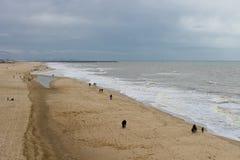 Het Strand van de herfst in Den Haag. Stock Foto's