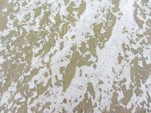 Het Strand van de herfst in Den Haag nederland Den Haag Stock Foto's