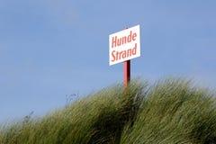Het strand van de hond Stock Foto