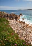 Het strand van de kiezelsteen, Cornwall Royalty-vrije Stock Foto