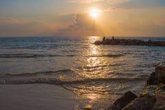 Het strand van de knuppelyam stock afbeelding