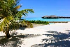 Het strand van de Maldiven Stock Afbeeldingen