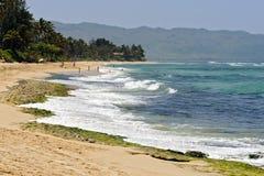 Het Strand van de schildpad (Laniakea), de Kust van het Noorden van Oahu royalty-vrije stock foto