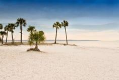 Het Strand van de Stad van Panama Stock Afbeelding