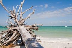 Het Strand van de Vakantie van de zomer stock foto's