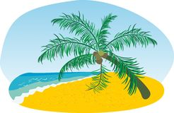 Het strand van de zomer met overzeese zon en palm Royalty-vrije Stock Foto's