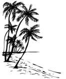 Het strand van de zomer met palmen Stock Afbeeldingen