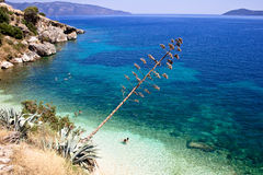Het strand van Efimia van Agia, Cephalonia stock afbeeldingen