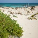 Het strand van Elafonisi (Kreta, Griekenland) Royalty-vrije Stock Afbeeldingen