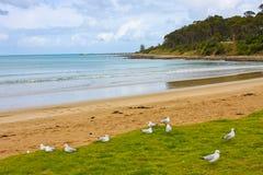 Het strand van Erskine Stock Afbeeldingen
