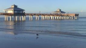 Het strand van fortmyers visserijpijler bij schemer stock videobeelden