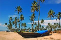 Het strand van goa-India. Royalty-vrije Stock Afbeelding