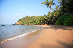 Het strand van Goan Stock Afbeelding