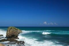 Het strand van Guajatake in Puerto Rico Stock Afbeelding