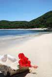 Het strand van het eiland met shell Royalty-vrije Stock Afbeelding