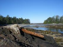 Het Strand van het Eiland van Vargas Royalty-vrije Stock Fotografie
