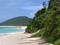 Het Strand van het Flamenco van het Eiland van Culebra Royalty-vrije Stock Foto