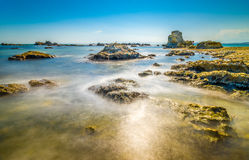 Het strand van het koraal Stock Afbeelding