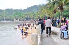 Het Strand van het nieuwe jaar Royalty-vrije Stock Afbeelding