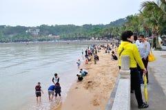 Het Strand van het nieuwe jaar Royalty-vrije Stock Foto's