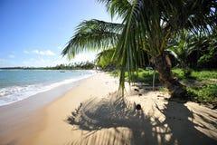 Het Strand van het paradijs stock afbeeldingen