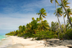 Het strand van het paradijs, Fakarava, Franse Polynesia Stock Afbeelding