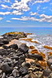 Het Strand van het Punt van Kaena Royalty-vrije Stock Afbeelding