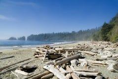 Het strand van het vreedzame kustzand Royalty-vrije Stock Foto's