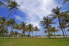 Het strand van het zuiden Stock Foto
