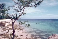 Het Strand van Indische Oceaan Royalty-vrije Stock Afbeeldingen