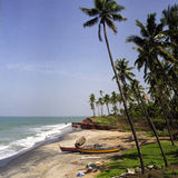 Het strand van Kerala stock afbeeldingen