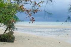 Het Strand van Klongprao Stock Afbeelding